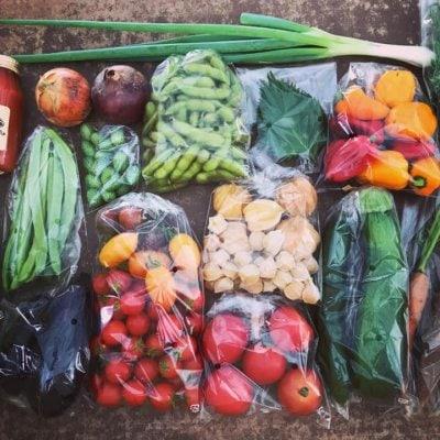 LaLaLa会員限定「野菜BOX定期便 Bプラン」