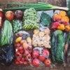LaLaLa会員限定「野菜BOX定期便 Aプラン」