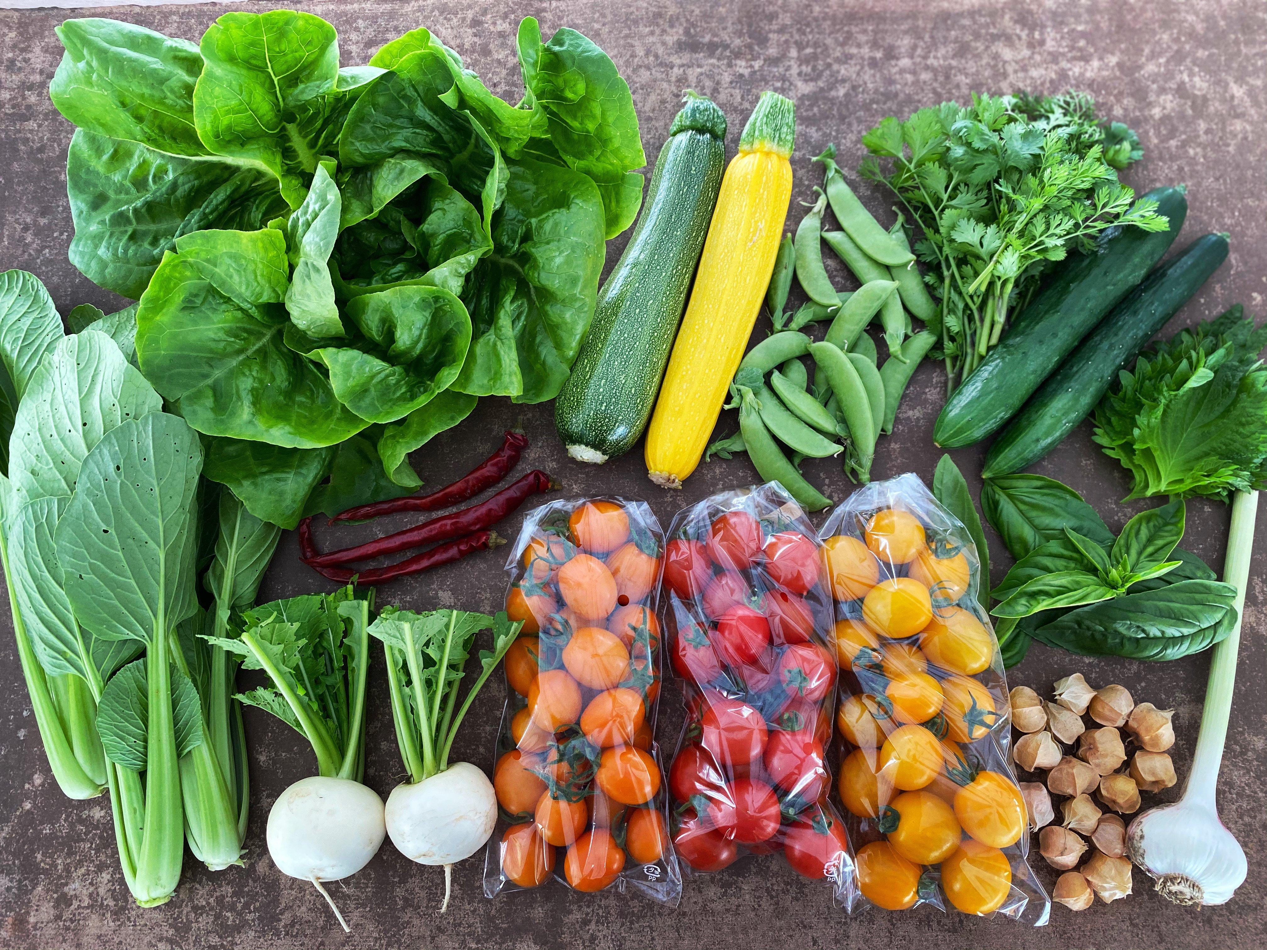 LaLaLa会員限定「野菜BOX定期便 Cプラン」のイメージその2