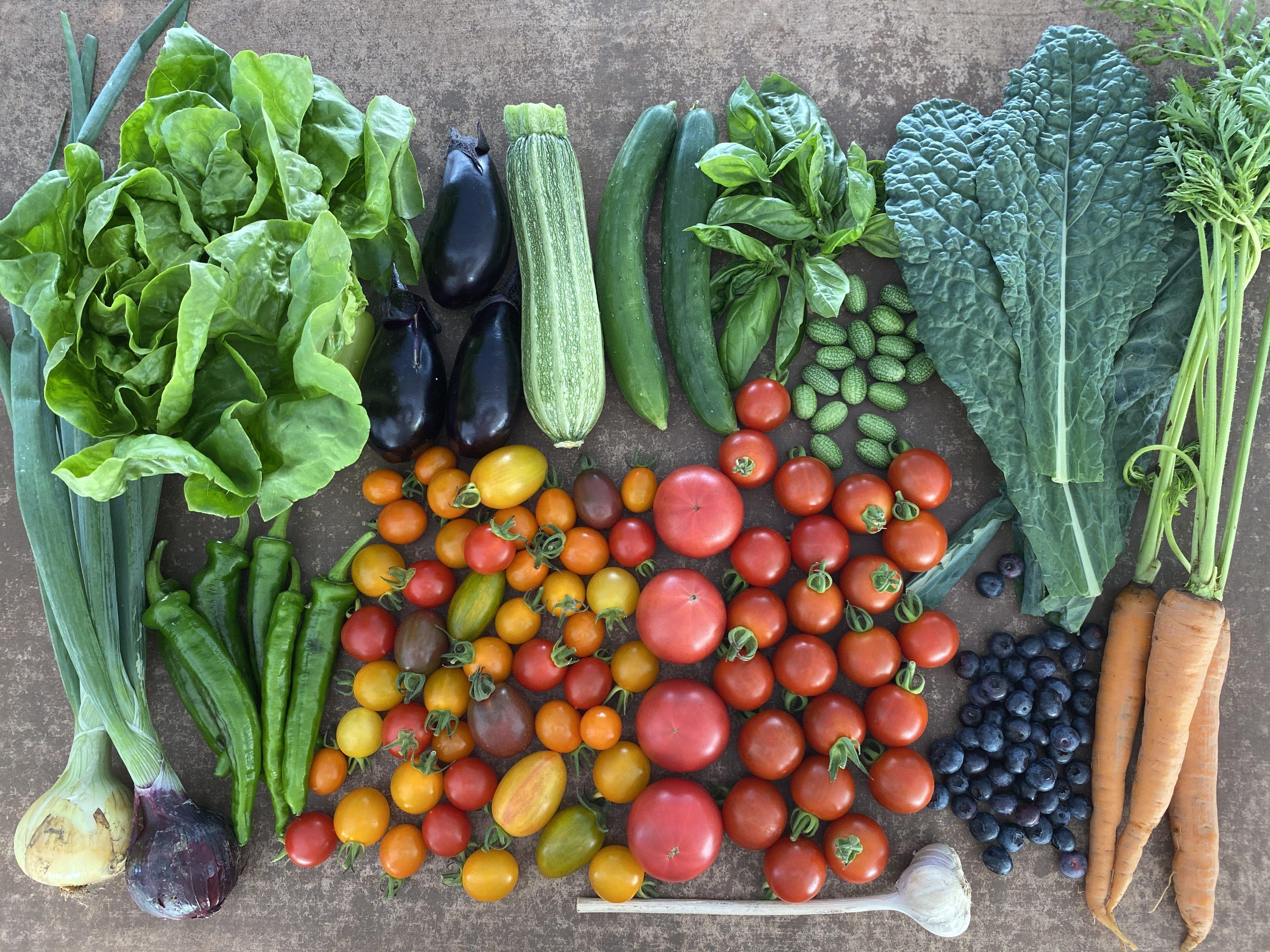 LaLaLa会員限定「野菜BOX定期便 Cプラン」のイメージその1