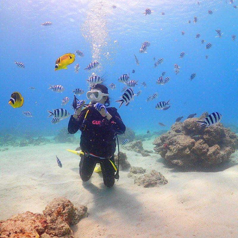 ケラマ1日体験ダイビング(ワンダイブ)のイメージその2