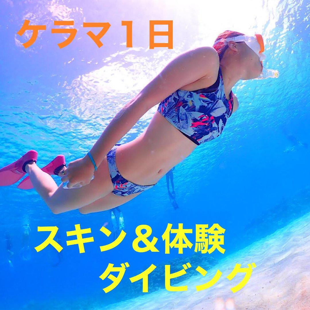 ケラマ1日スキンダイビング&体験ダイビングのイメージその1