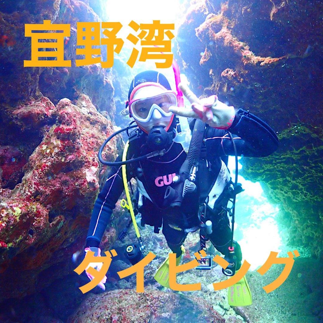 沖縄本島ダイビング 手軽さNO1宜野湾エリアのイメージその1