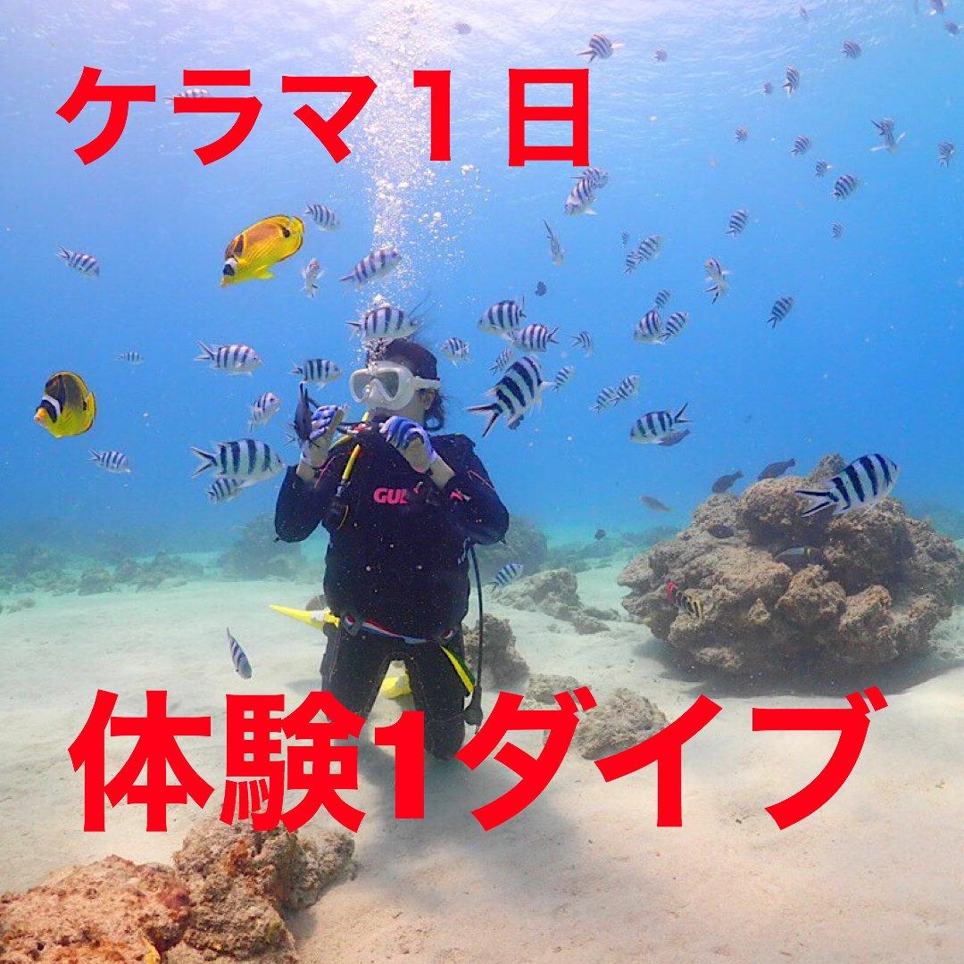 ケラマ1日体験ダイビング(ワンダイブ)のイメージその1