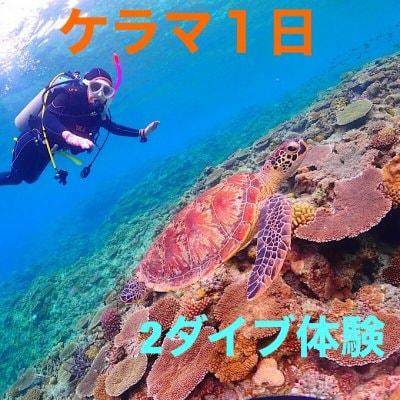 ケラマ1日(2ダイブ)体験ダイビング
