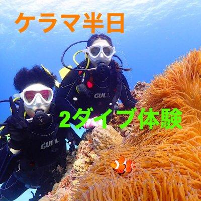 ケラマ半日体験ダイビング(2ダイブ)