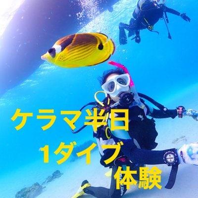 ケラマ半日体験ダイビング(1ダイブ)