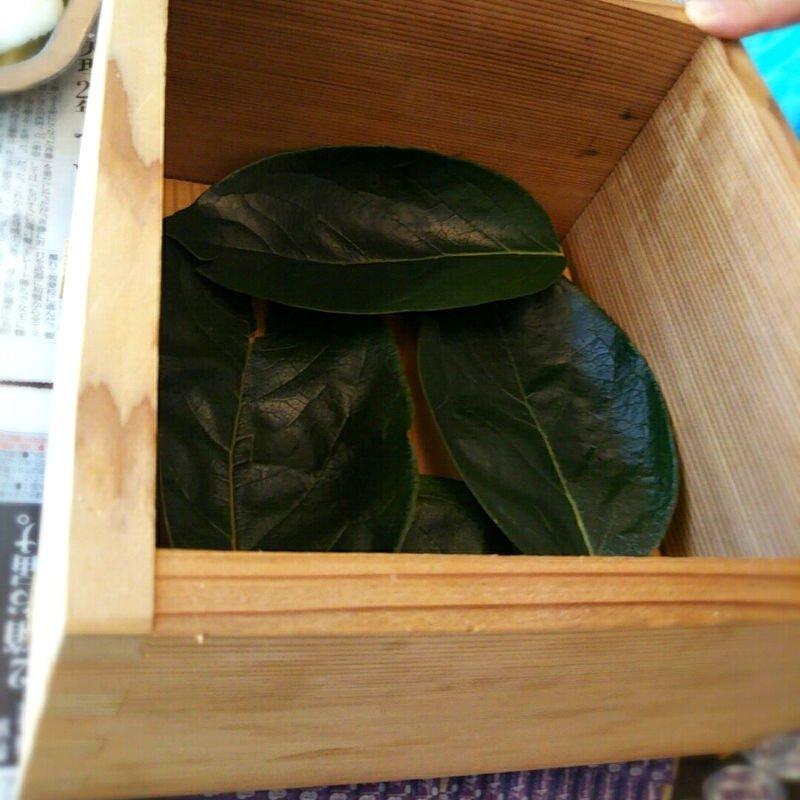 【完売致しました】柿の葉寿司を楽しく作って美味しく食べよう!!1日体験教室!!ランチ付きワークショップのイメージその4