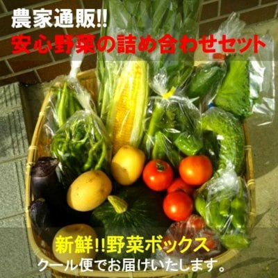 野菜通販•新鮮!!野菜の玉手箱|農家だからできる安心野菜の詰め合わせセ...