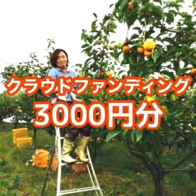 クラウドファンディング3000円分(活動報告お礼状+下市町の自然あふれる写真)