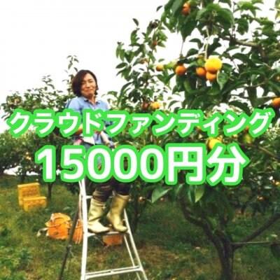 クラウドファンディング15.000円分(富有柿オーナー様としての権利/通常価格16,500円相当品)