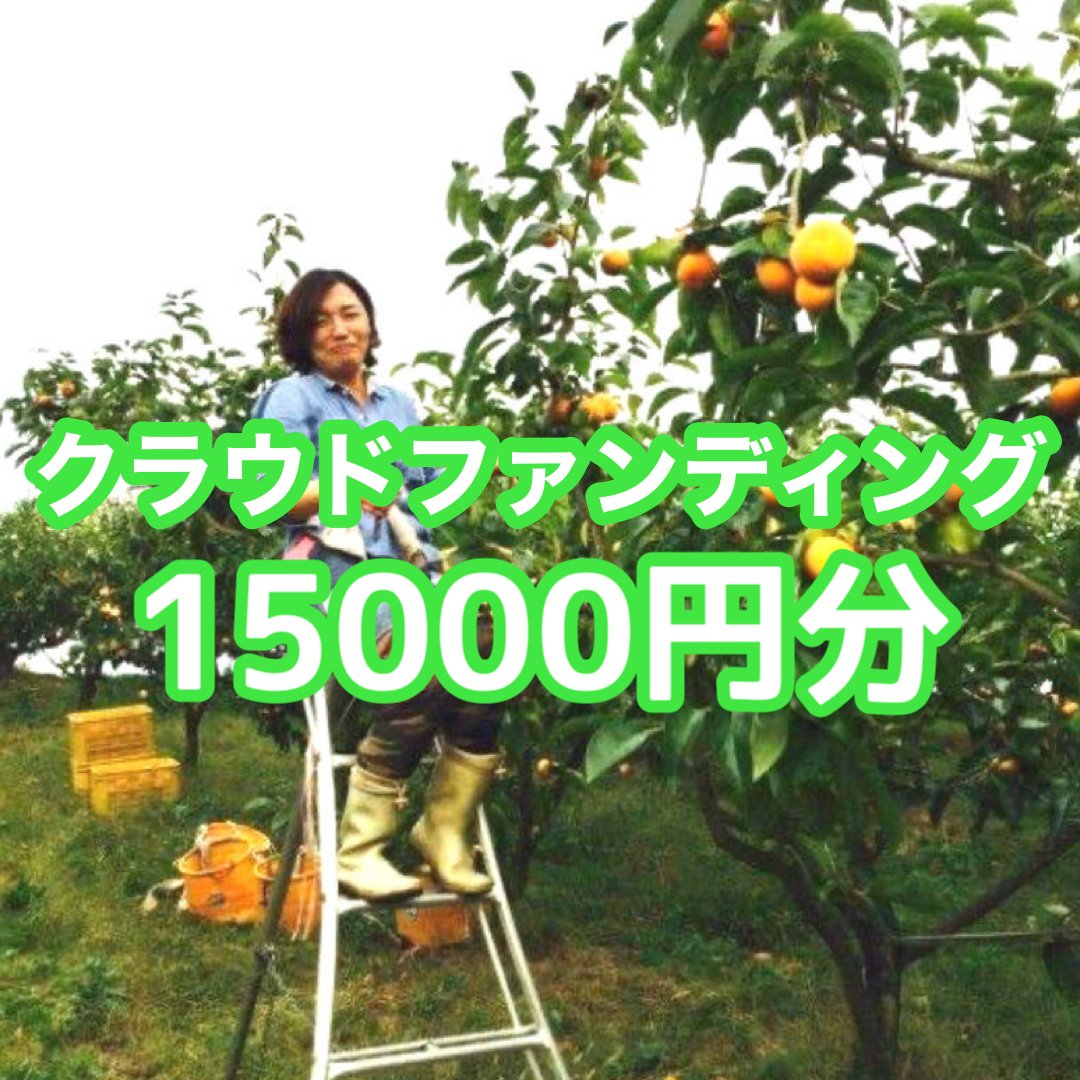 クラウドファンディング15.000円分(富有柿オーナー様としての権利/通常価格16,500円相当品)のイメージその1