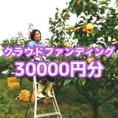 クラウドファンディング30.000円分(秋の収穫でとれた富有柿10kg+下市町で生産された新鮮野菜の詰め合わせセット)