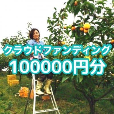 クラウドファンディング100.000円分(贈答用富有柿10ケース3Lサイズ•12個入)