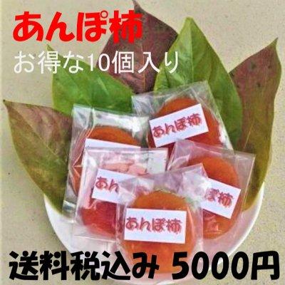 【完売御礼】吊るし柿(あんぽ柿)10個入り/送料無料/数量限定