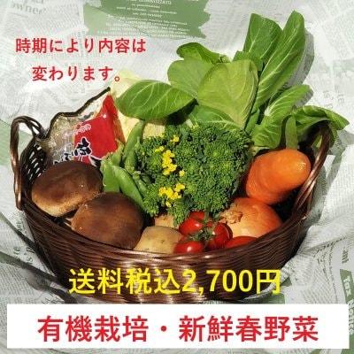 野菜の玉手箱(少人数用)お試しセット/5〜8種類の新鮮野菜の詰め合わせ|...