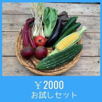 【お試し専用】【宅配】ベジんちゅ野菜ボックス2000円セット+宅配料500円
