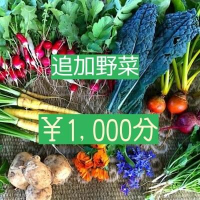 野菜セット追加1000円分【ベジんちゅ会員限定】