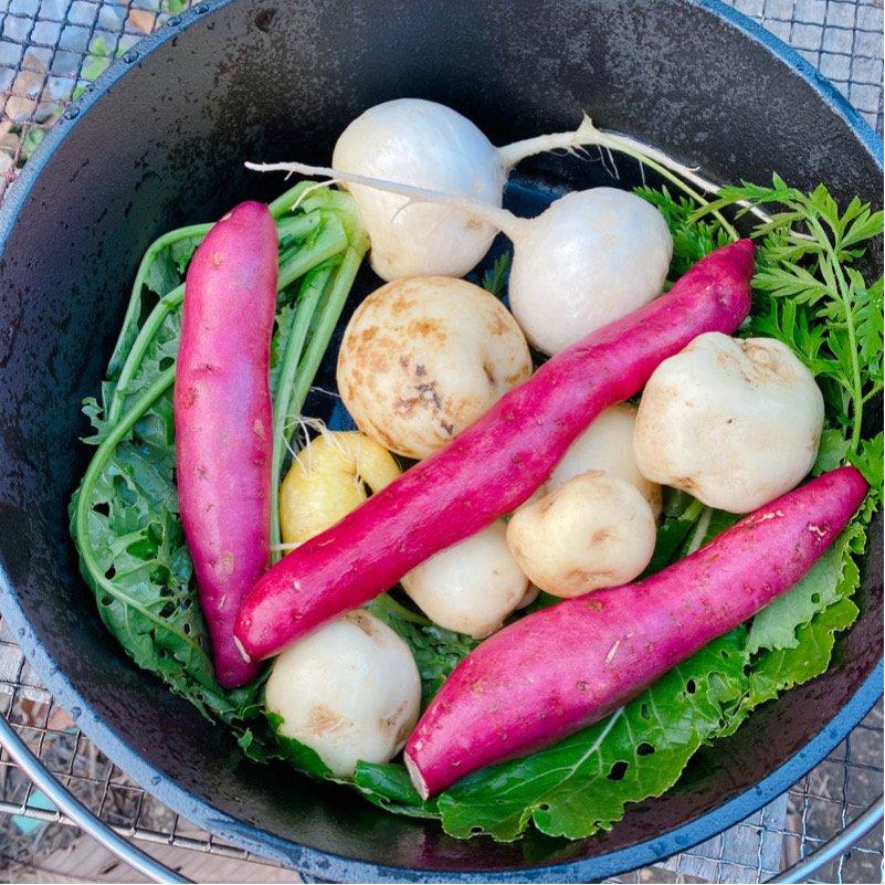 農業体験、焼き野菜体験のイメージその2