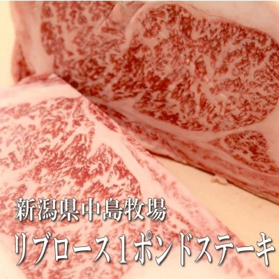 中島牧場牛リブロース1ポンドステーキ リブロースは肉の甘い脂が特徴!ステーキといえば脂が好きという方はぜひ!1ポンドは450g!二人でも大満足のボリューム!