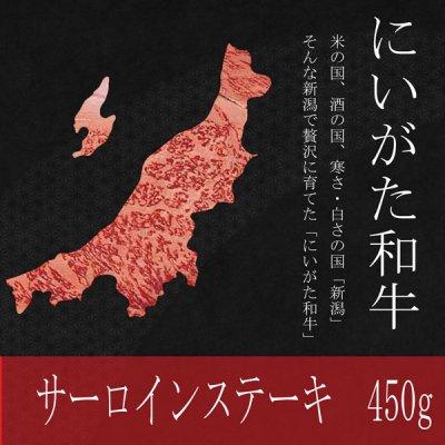大特価!にいがた和牛 サーロインステーキ 450g 今だけの特別価格!