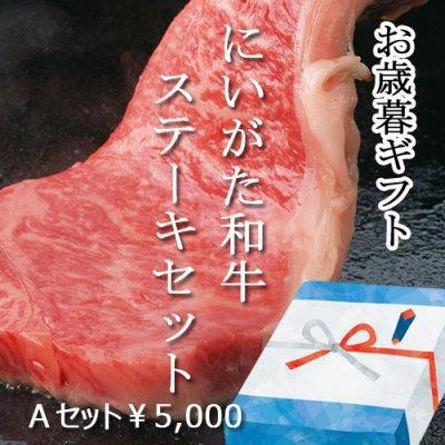 Aセット お歳暮にもご自宅用にも!大特価!にいがた和牛 ステーキセット 300g×2種