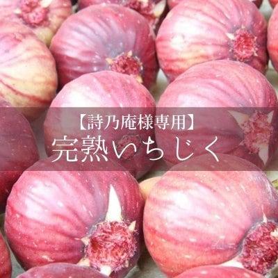 【詩乃庵様専用】完熟いちじく