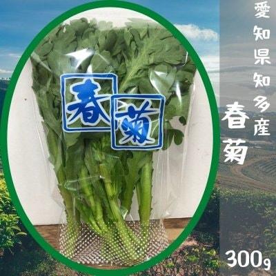 愛知県知多産 春菊 300g【送料無料】※一部地域除く