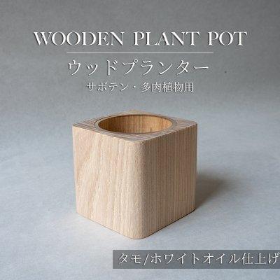 【タモ/ホワイトオイル仕上げ】ウッドプランター(サボテン・多肉植物用)