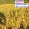 新米コシヒカリ5kg(令和2年産)