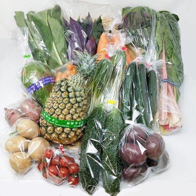 【店長シンガキ厳選】おまかせ沖縄島野菜セット(120サイズ)