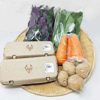 【ステイホーム応援】【徳森養鶏場の卵×野菜を中心にチョイスします】おまかせ1食分おつかいセット