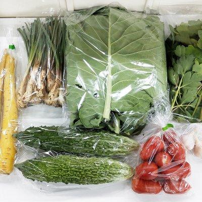 【送料無料】うるま市産おまかせ農水産物セット(80サイズ)
