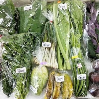 【送料無料】うるま市産おまかせ農水産物セット(120サイズ)