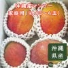 【7月上旬順次発送】沖縄産マンゴー家庭用1㎏(3〜4玉)