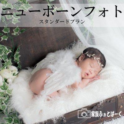 赤ちゃんの撮影〜ニューボーンフォト|スタンダードプラン