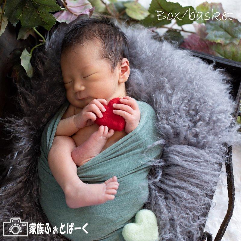 赤ちゃんの撮影〜ニューボーンフォト|スタンダードプランのイメージその4