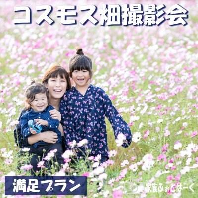 【満足プラン】コスモス畑ロケーション撮影会