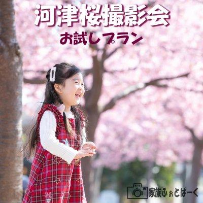 【お試しプラン】河津桜ロケーション撮影会