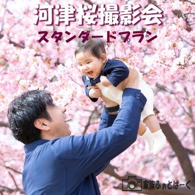 【スタンダードプラン】河津桜ロケーション撮影会