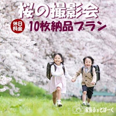【休日:10枚納品プラン】桜の撮影会