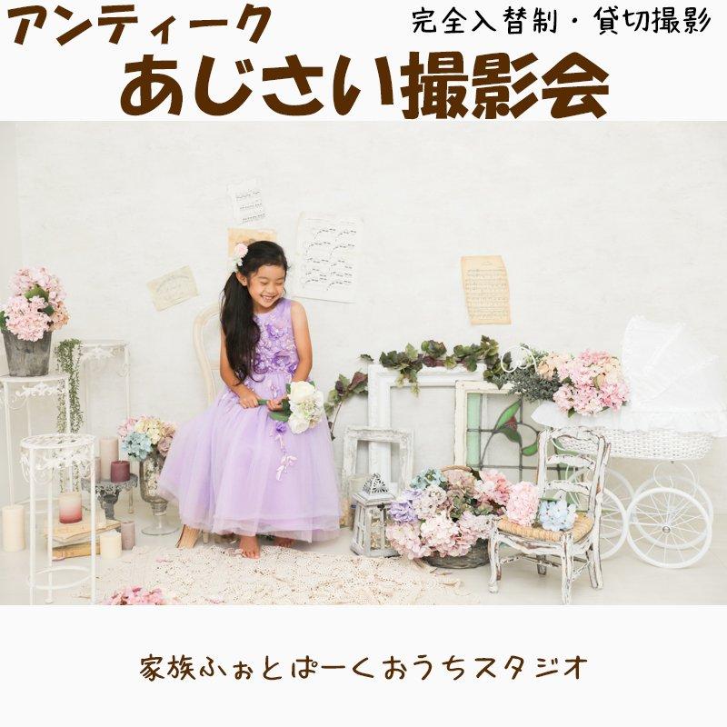 [個別依頼]アンティーク紫陽花撮影会in家族ふぉとぱーくスタジオのイメージその4