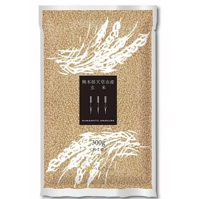 精米 【真空パック】 つなごまい 熊本県天草の玄米 300g×10個セット