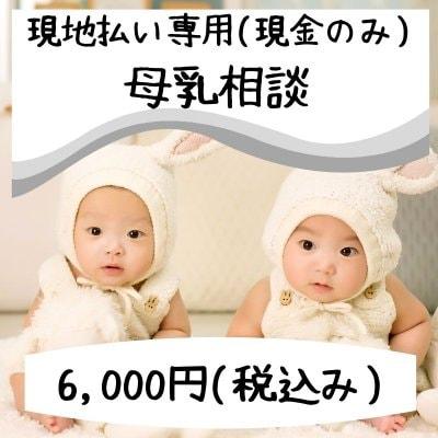 現地払い(現金)専用 母乳相談(授乳方法、おっぱいマッサージ、卒乳、乳房トラブル、乳腺炎など、母乳に関するご相談)