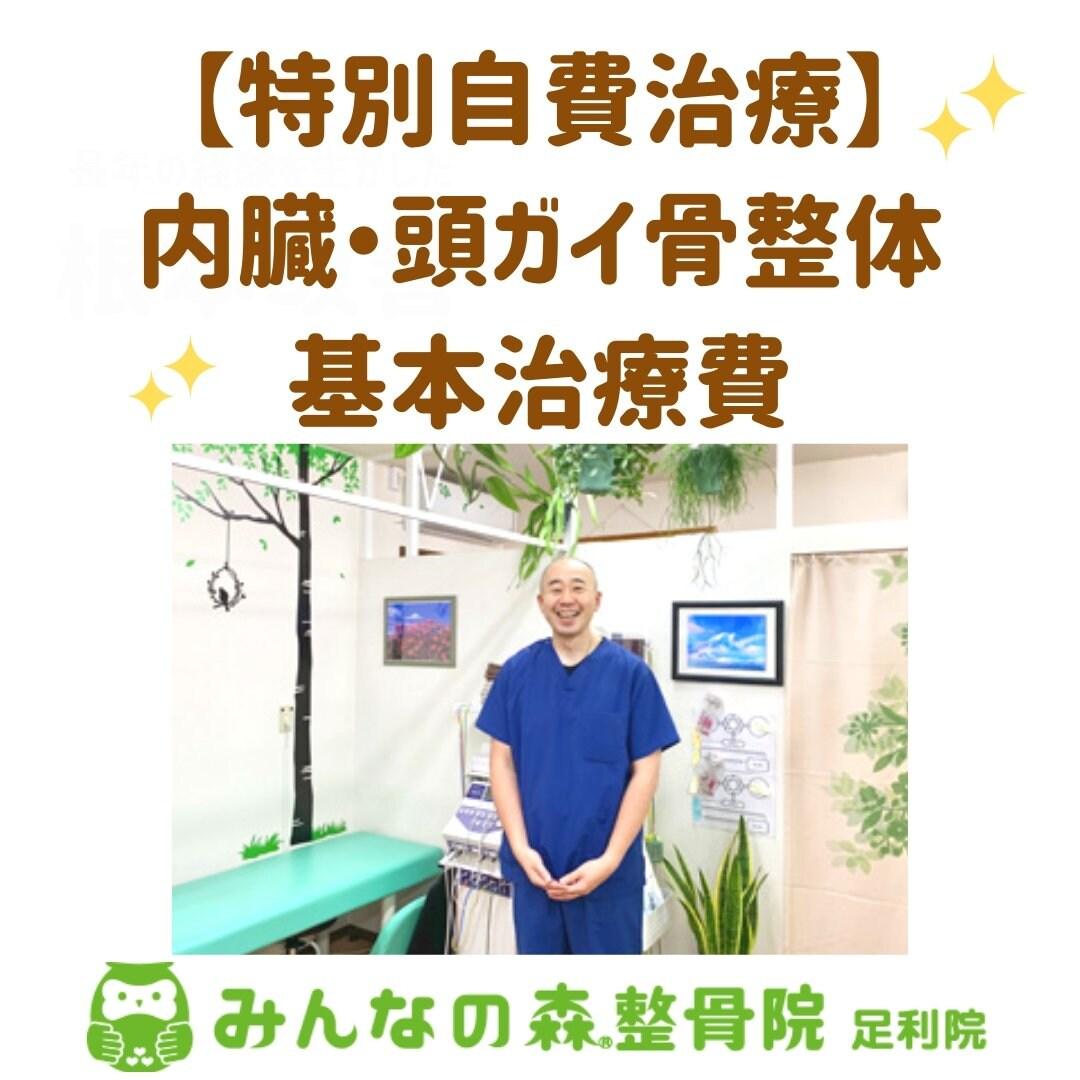 【特別自費治療】内臓・頭ガイ骨整体・基本治療費のイメージその1