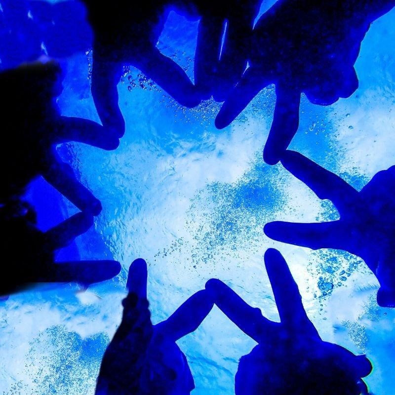 【現地払い専用】シーズン割引/慶良間1日体験ダイビング/シュノーケリング/無人島上陸or ホエールウォッチング(A)のイメージその3