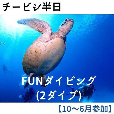 【現地払い専用】シーズン割引/チービシ半日便/FUNダイビング/ライセンス保有者限定
