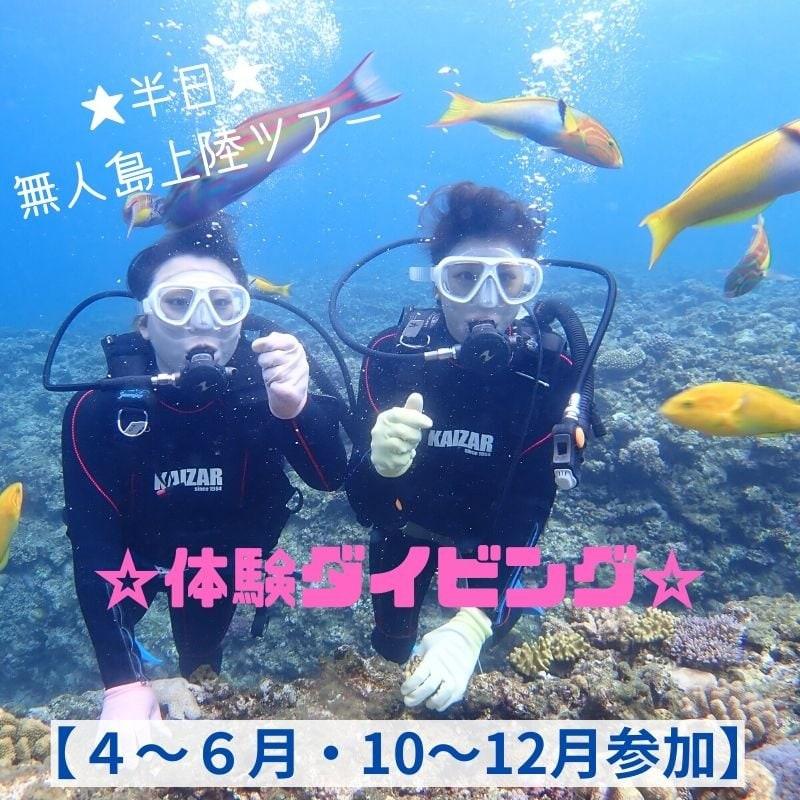 【現地払い専用】シーズン割引/慶良間半日便/体験ダイビング/シュノーケリング無人島上陸ツアー(D)10歳〜59歳のイメージその1