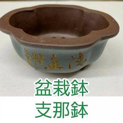 【盆栽鉢として使われている支那鉢】高級な盆栽が植えられていた「支那鉢」平成渡りNO-11