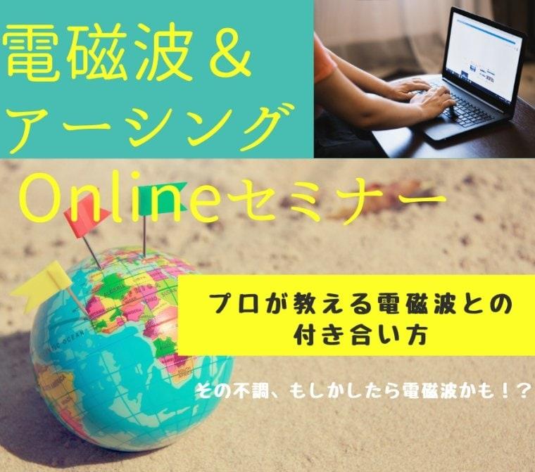 電磁波&アーシング Onlineセミナー120分ウェブチケット6/21(日)14時〜16時のイメージその1
